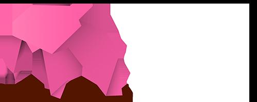 PixelDesign - Páginas web y programas de gestión